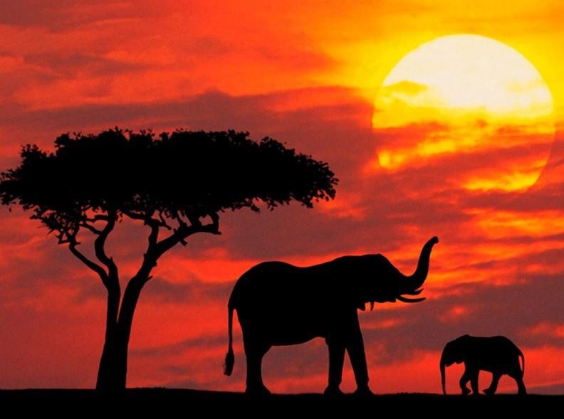 Teatrzyk Spotkanie Z Afryką Część I Przedszkole Miejskie